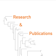 research-and-publications